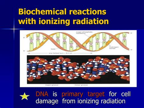 Biological Effects Of Ionizing Radiation At Molecul