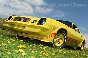 Maserati 1974 Datsun 510 For Sale Rotiform Mia Mobil