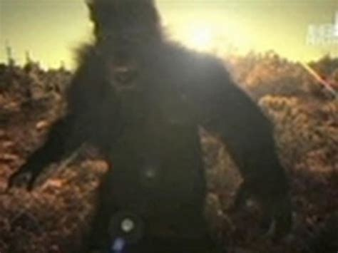 bfro reacts  russian yeti claims finding bigfoot youtube
