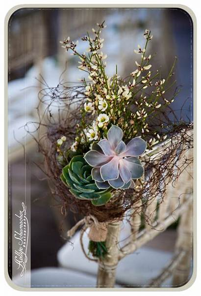 Aisle Desert Decor Garden Botanical Decorations Wildflower