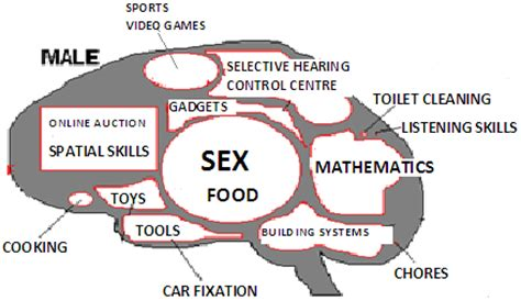 users manual   male brain psychology today