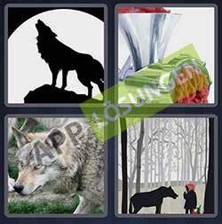 bilder  wort level  loesung wolf bilder und sprueche