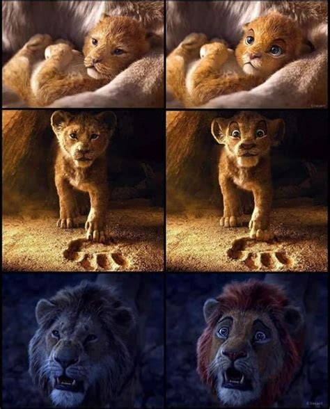 animals    action lion king