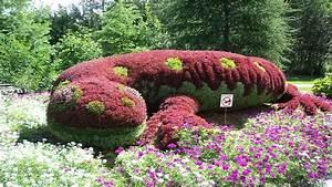 Blumen Für Garten : blumen garten pflanzen salamander download der kostenlosen fotos ~ Frokenaadalensverden.com Haus und Dekorationen
