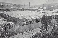 Image result for Poisoned Lake George Poisoned Lake Champlain