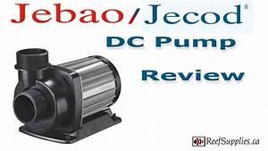 Jebao    Jecod Dc Pump Review