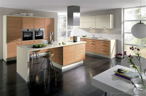 interiors cuisine pictures of kitchens modern light wood kitchen