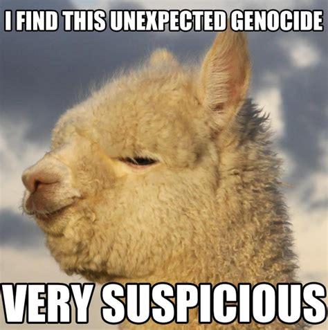 Alpaca Meme - alpaca meme memes