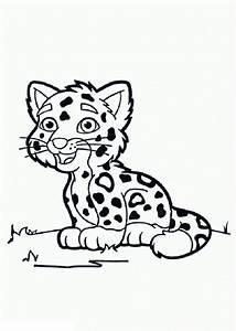 Leopardo para colorear Dibujos para colorear
