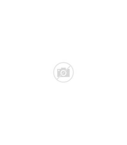Welsh Wales Speakers Svg Sprache Wikipedia Datei