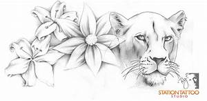 The gallery for --> Lioness Roaring Drawing