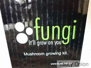 Bunnings Mushroom Kit Instructions