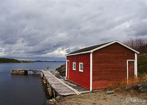 fishing sheds fishing sheds of newfoundland a gallery on flickr