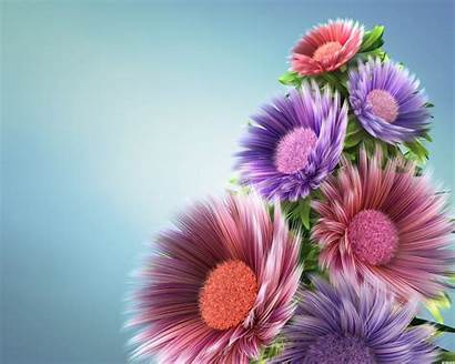 Nature Flowers Wallpapers Fine