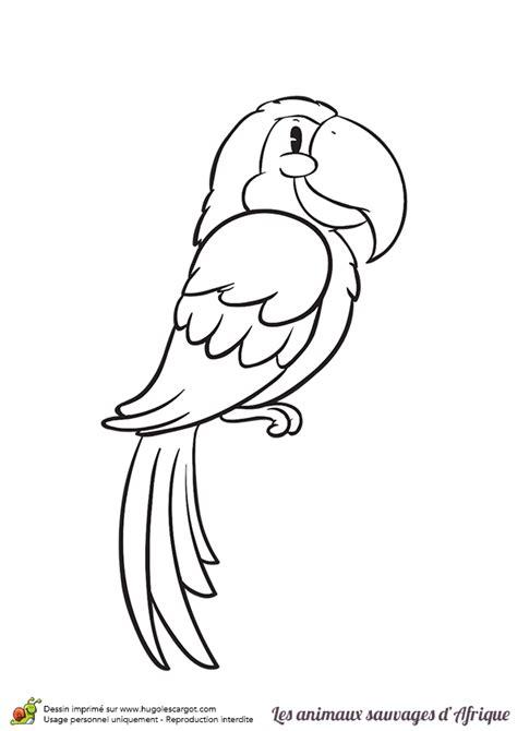 Dessin Animaux Facile Coloriage Animaux Sauvages D Afrique Le Perroquet