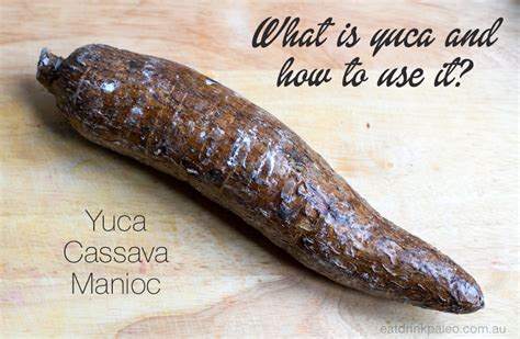 what is cassava eat drink paleo delicious paleo recipes for everyone part 4