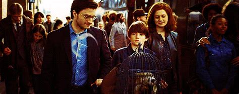 Harry Potter's Son Going To Hogwarts Makes Us All Feel Old