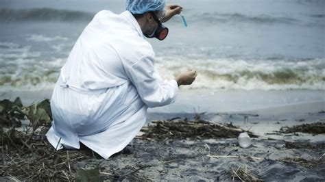 Marine Biologist Job Description Sample Template ...