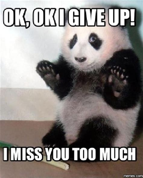 I Miss You Memes - 20 cutest i miss you memes of all time sayingimages com
