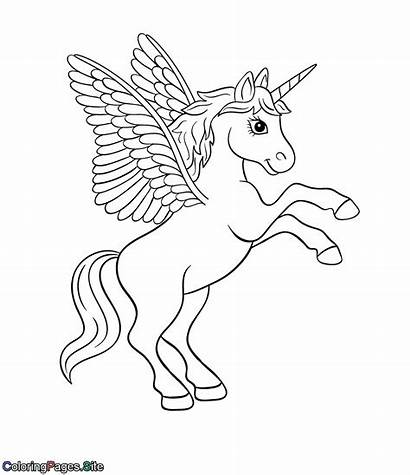 Unicorn Coloring Wings Drawing Pages Pegasus Horse