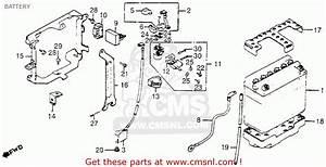 Honda Goldwing Wiring Diagram