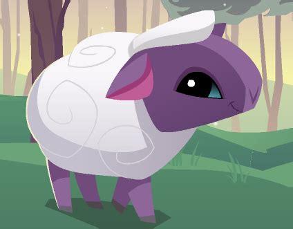 sheep animal jam wiki fandom powered  wikia