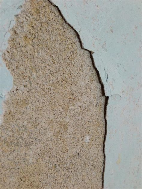 house state  walls  stripping wallpaper