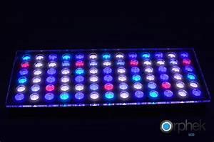 Aquarium Led Beleuchtung : aquarium led beleuchtung orphek aquarium led beleuchtung ~ Frokenaadalensverden.com Haus und Dekorationen