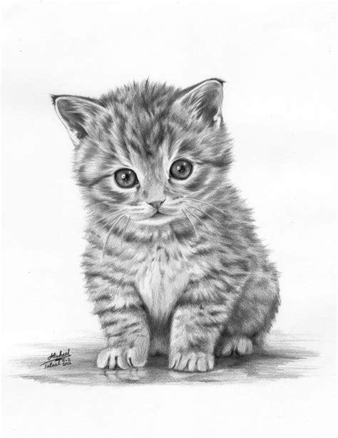 animals drawings art drawing cute animal pencil litle pups