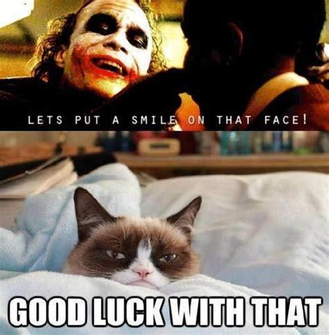 Good Luck Cat Meme - grumpy cat meme 11 13 new grumpy cat memes joker lets put a smile on that face good luck with