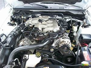 2004 Ford Mustang Convertible 3 8 Liter Ohv 12