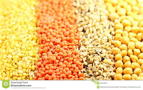 types  pulses royalty  stock photo image