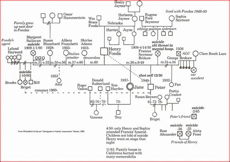 4 Generation Family Tree Template 12 Free Sle 8 Free Genogram Sletemplatess Sletemplatess