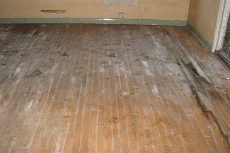 hit the floor vietsub laminate flooring water damage 28 images laminate flooring water damage laminate flooring