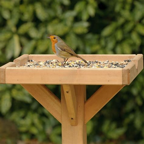 open bird table super suet cakes offer rspb bird care