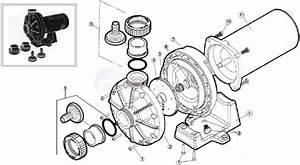 Hayward Booster Pump Model 6060 Parts