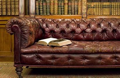 Leather Brown Couch Library