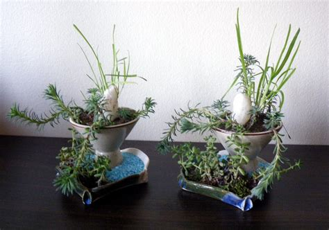 Scented Leaf Potted Plants As Centerpieces