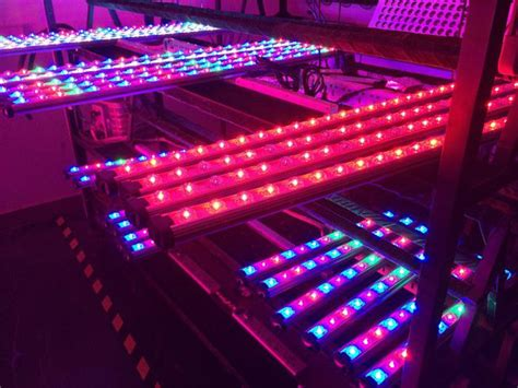 24 36 48 hoticultural led grow bar led
