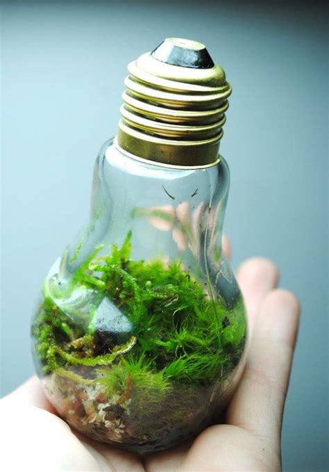 20 awesome diy ideas for recycling light bulbs eye q