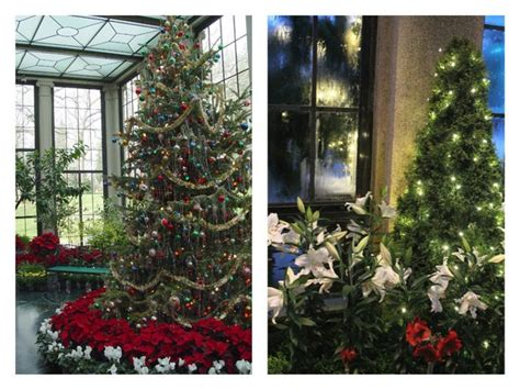 why do we decorate christmas trees anyway here are a few