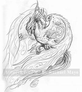 Whitefire Phoenix sketch by rachaelm5 on DeviantArt