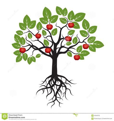 baum mit herzblättern baum mit gr 252 nen bl 228 ttern wurzeln und rotem apple stock abbildung illustration dekorativ