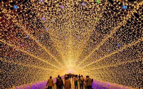 dazzling light show   japanese flower garden