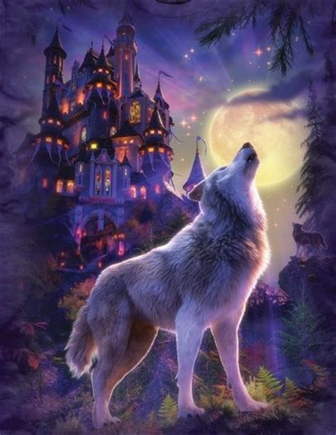 17 images about wolves on gray wolf the