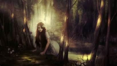 Fantasy Forest Dark Wallpapers 4k Backgrounds Resolution