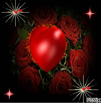 Rose Heart Picmix Output