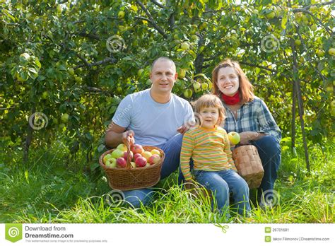 Happy Family With Apples Harvest In Garden Stock Image