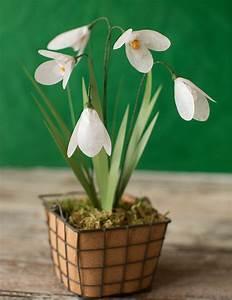 Blumen Basteln Vorlage : schneegl ckchen basteln im fr hling bastelideen f r gro und klein ~ Frokenaadalensverden.com Haus und Dekorationen