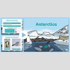 * New * Antarctica  Prezentare Powerpoint